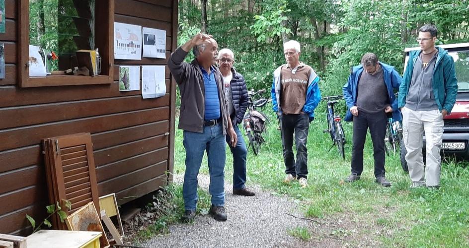 Besichtigung Bienenhaus